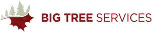 Big Tree Services Logo